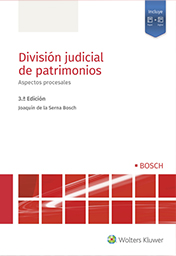 Division judicial de patrimonios: Aspectos procesales