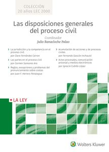 Disposiciones generales del proceso civil
