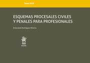 Tomo XLVII Esquemas Procesales Civiles y Penales Para Profesionales